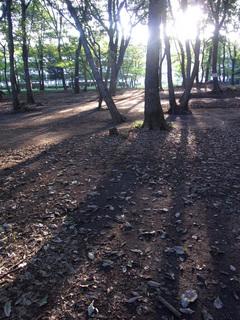 konomidori-blog4.jpg